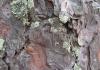 Rattijuoppo törmäsi peräjälkeen kahteen eri puuhun